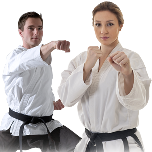 adult karate classes online