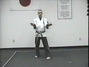 Online Karate Training Video