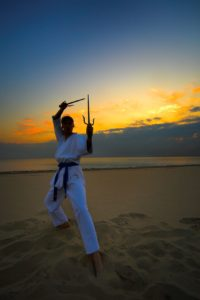 Online Martial Arts Weapons Training